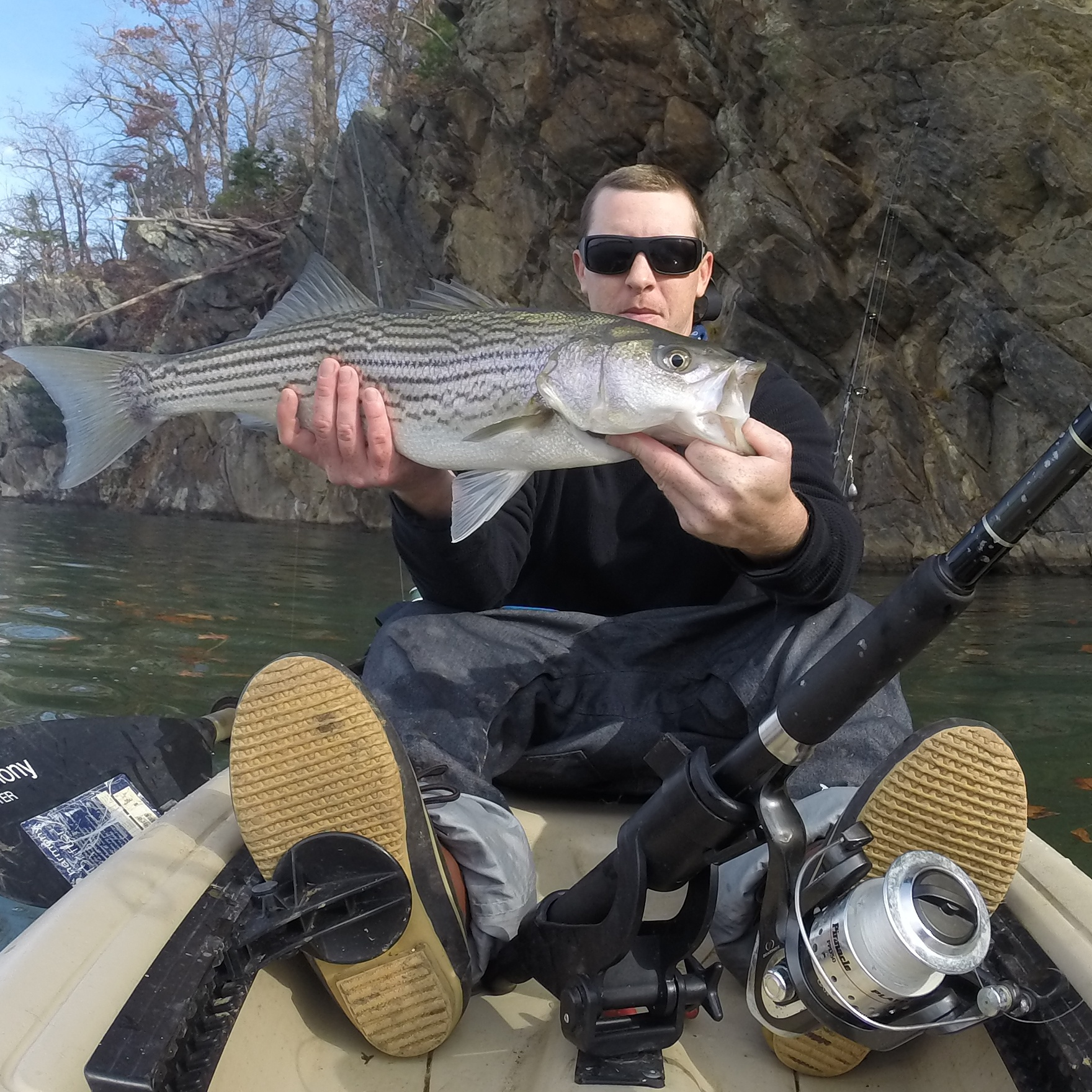 Smith mountain lake lake report by capatian dale wilson for Smith mountain lake fishing report