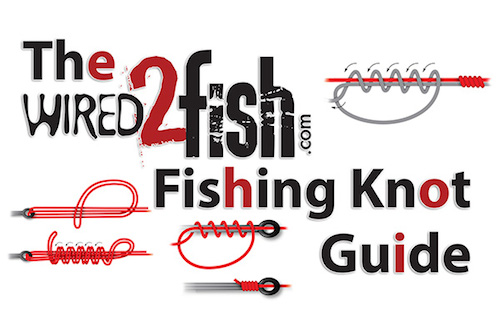 15 Fishing Knots Every Angler Should Know by: Jason ...